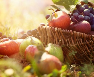 Paniers-de-fruits